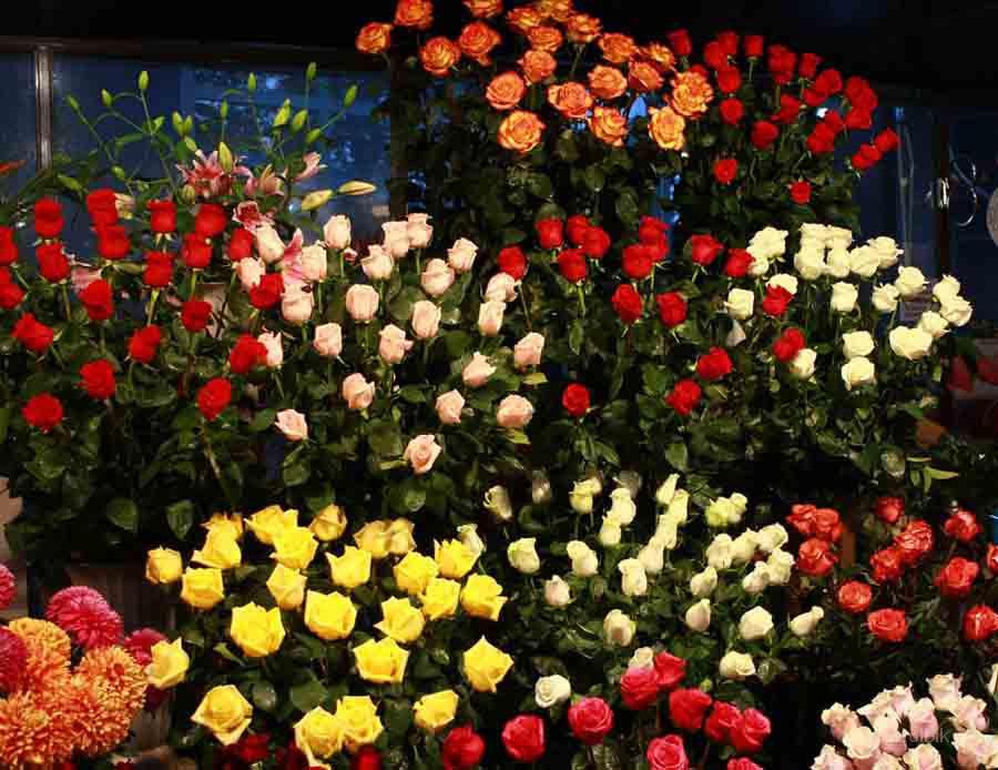 Нальчик доставка цветы