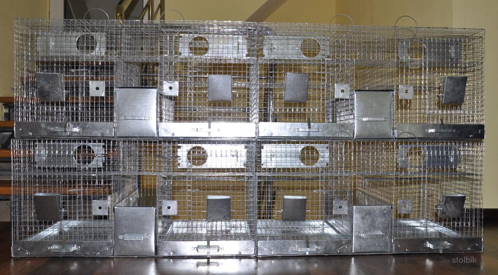 Схема сбора клетки для шиншилл